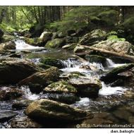 Bílá Opava jako divoká řeka